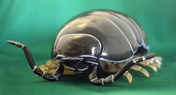 ソフビトイボックス012A ダンゴムシ オカダンゴムシ