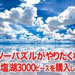 ジグソーパズルがやりたくなりウユニ塩湖の3000ピースを購入した結果