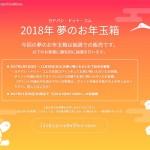 ヨドバシカメラWeb福袋2018年の当選確率は?「事前申し込み」をした結果