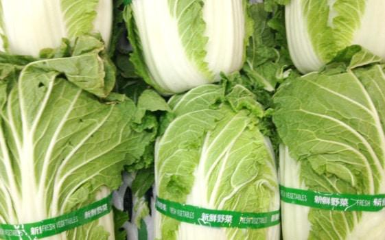 白菜の値段が高すぎ!2018年白菜が高い理由とは?高値はいつまで続くの?