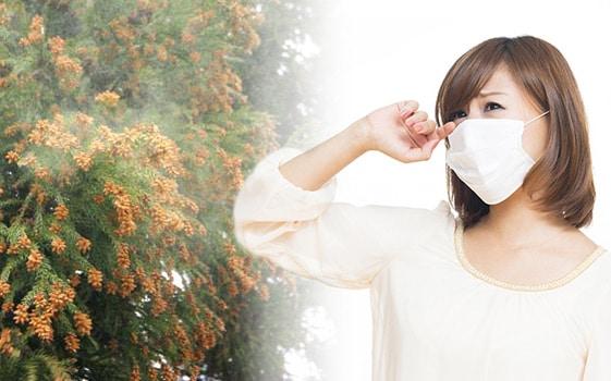花粉症に効果のある食べ物や飲み物とは?体質改善で花粉症を治せるの?