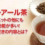プーアール茶ダイエットは簡単!他にも驚異的な効果効能とは?