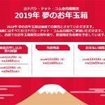 ヨドバシカメラWeb福袋2019年の当選確率は?「抽選申し込み」をした結果