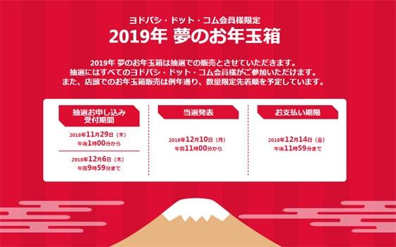 ヨドバシカメラWeb福袋2019年の当選確率は?「事前申し込み」をした結果