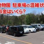 【円山動物園】駐車場の混雑状況は?駐車料金はいくら?実際に行ってみた結果