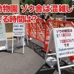 【円山動物園】ゾウ舎は混雑してる?空いてる時間は?