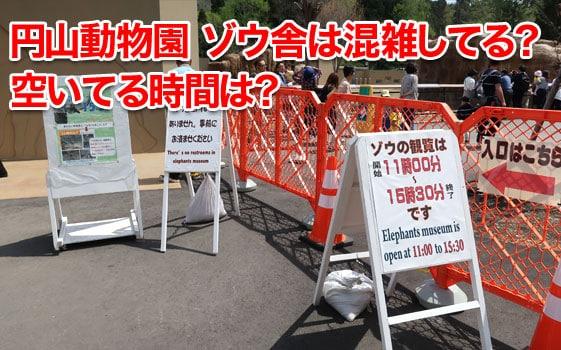 円山動物園ゾウの混雑状況は?空いてる時間は何時?