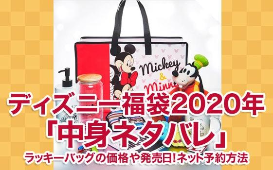ディズニー福袋2020年「中身ネタバレ」ラッキーバッグの価格や発売日!ネット予約方法