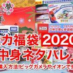 トミカ福袋2020年「中身ネタバレ」価格や購入方法!ビックカメラやイオンで買えるの?