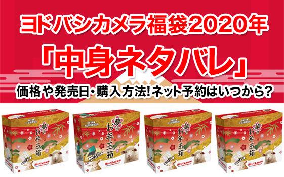 ヨドバシカメラ福袋2020年「中身ネタバレ」 価格や発売日・購入方法!ネット予約はいつから?