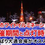 【2019年】札幌(さっぽろ)ホワイトイルミネーションの開催期間と点灯時間!やっぱり大通会場がオススメ?